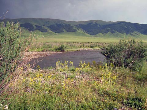 Река Шалкудысу и горы Каратау